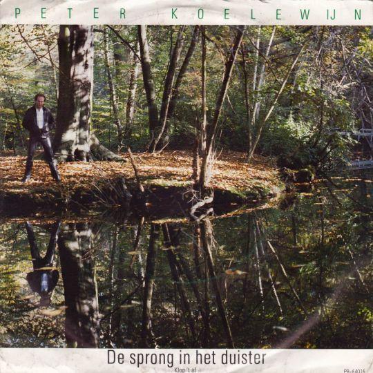 Coverafbeelding De Sprong In Het Duister - Peter Koelewijn