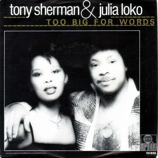 Coverafbeelding Too Big For Words - Tony Sherman & Julia Loko