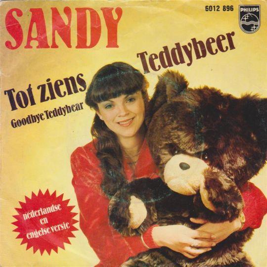 Coverafbeelding Tot Ziens Teddybeer - Sandy
