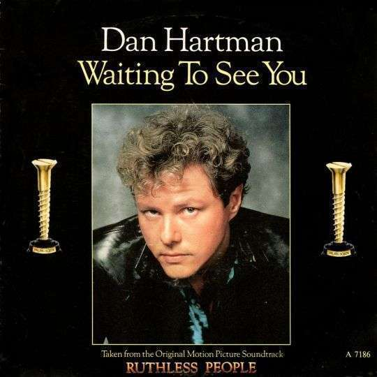 Coverafbeelding Waiting To See You - Dan Hartman