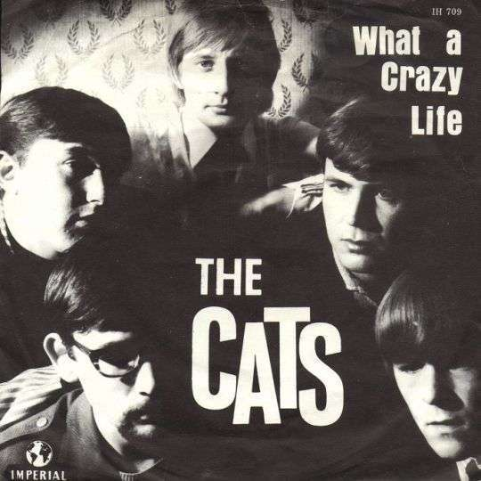 Coverafbeelding What A Crazy Life - The Cats