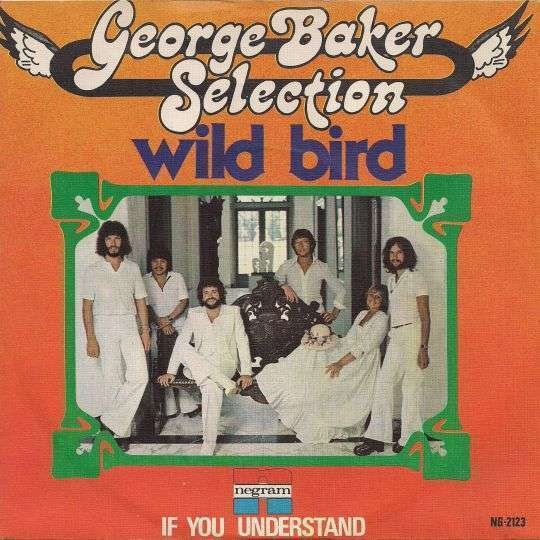 Coverafbeelding Wild Bird - George Baker Selection