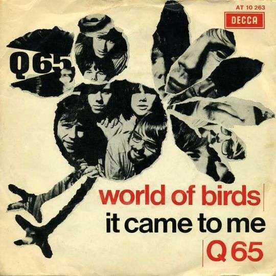 Coverafbeelding World Of Birds - Q65