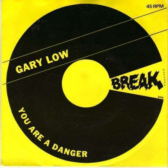 Coverafbeelding You Are A Danger - Gary Low