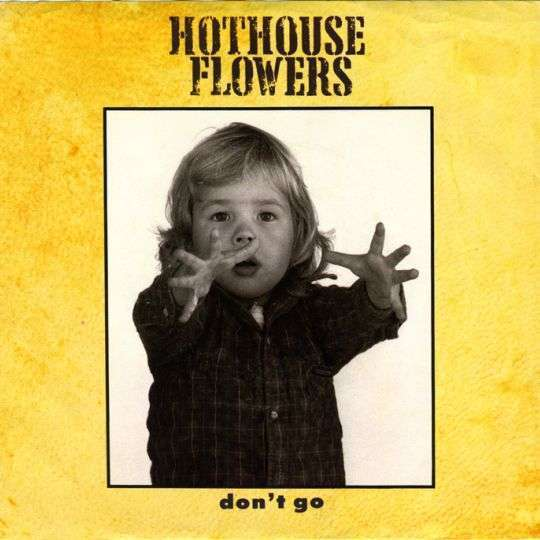 Coverafbeelding Don't Go - Hothouse Flowers