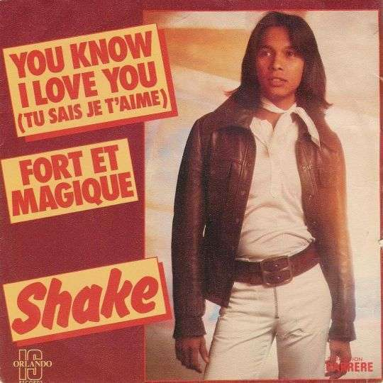 Coverafbeelding Shake - You Know I Love You (Tu Sais Je T'aime)