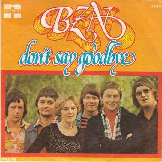 Coverafbeelding Don't Say Goodbye - Bzn