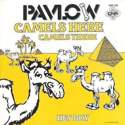 Coverafbeelding Pavlow - Camels Here Camels There