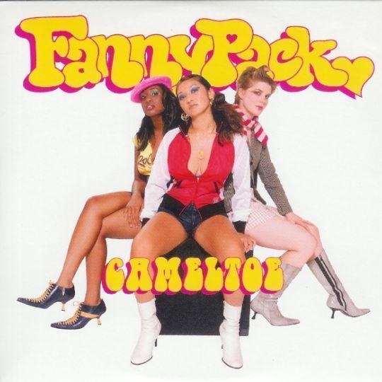 Coverafbeelding FannyPack - Cameltoe