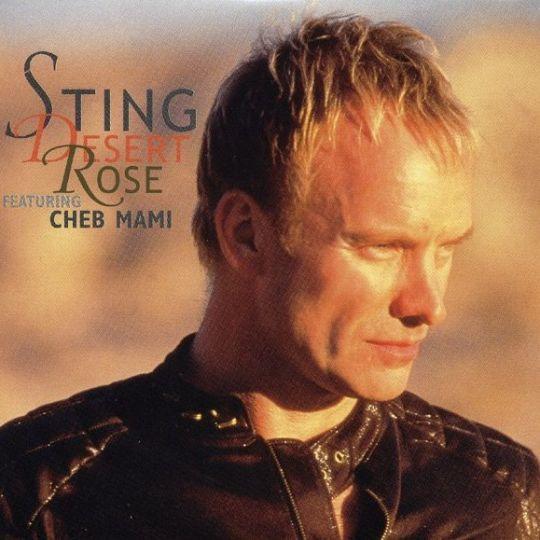 Coverafbeelding Desert Rose - Sting Featuring Cheb Mami