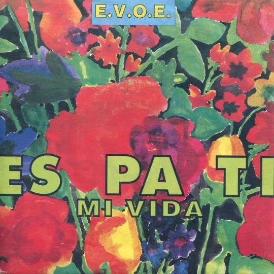 Coverafbeelding E.V.O.E. - Es Pa Ti Mi Vida