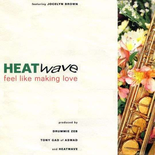 Coverafbeelding Heatwave featuring Jocelyn Brown - Feel Like Making Love
