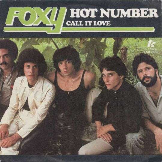 Coverafbeelding Hot Number - Foxy