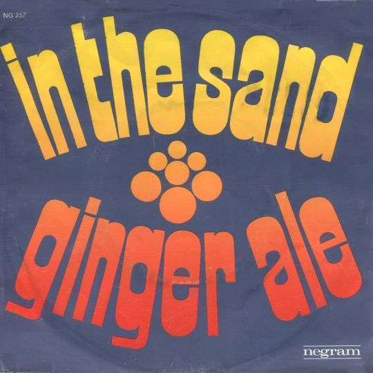 Coverafbeelding In The Sand - Ginger Ale