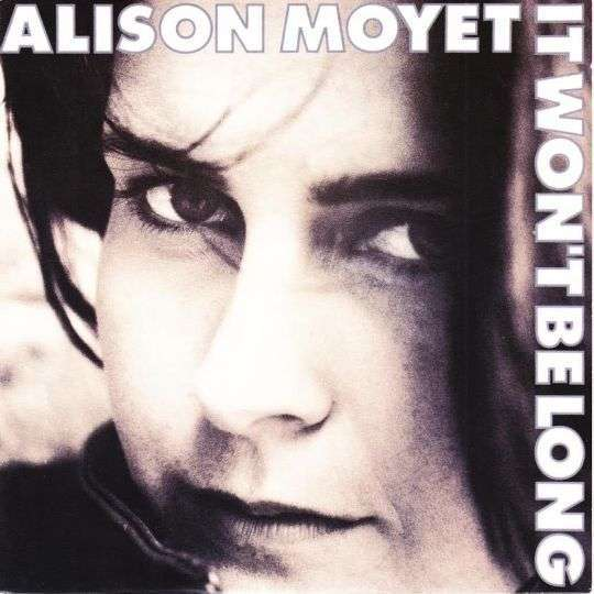 Coverafbeelding It Won't Be Long - Alison Moyet