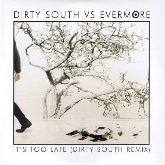 Coverafbeelding It's Too Late (Dirty South Remix) - Dirty South Vs Evermore