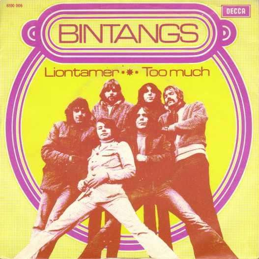Coverafbeelding Liontamer - Bintangs