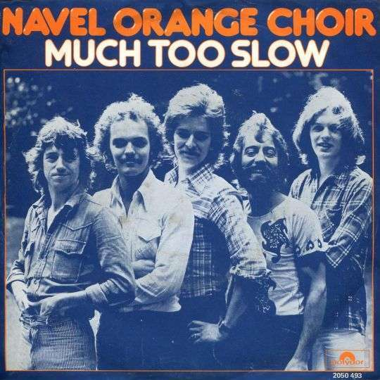 Coverafbeelding Much Too Slow - Navel Orange Choir
