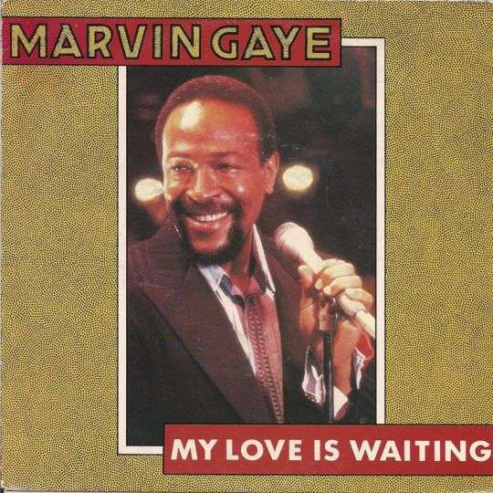 Coverafbeelding My Love Is Waiting - Marvin Gaye