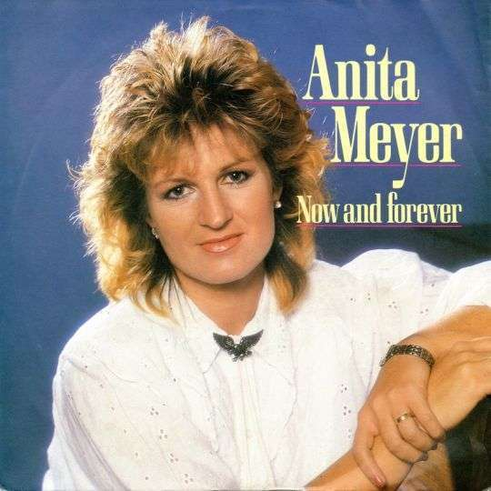 Coverafbeelding Now And Forever - Anita Meyer