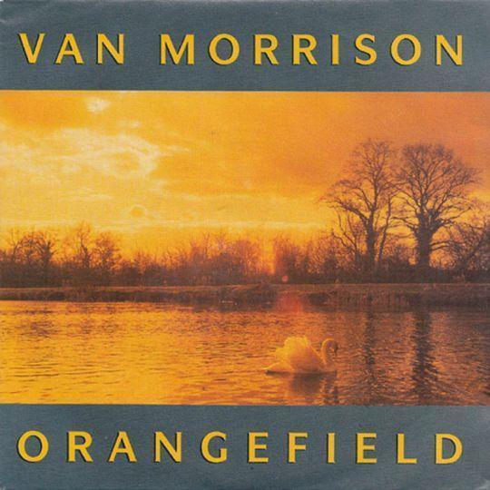 Coverafbeelding Orangefield - Van Morrison