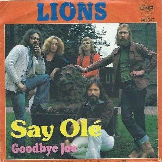 Coverafbeelding Say Olé - Lions