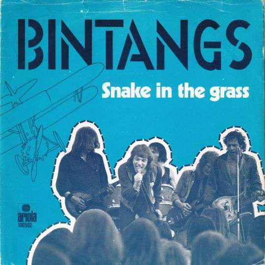 Coverafbeelding Bintangs - Snake In The Grass