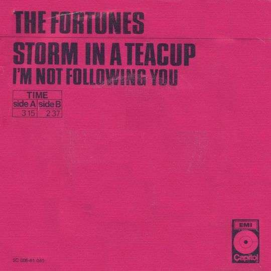 Coverafbeelding The Fortunes - Storm In A Teacup
