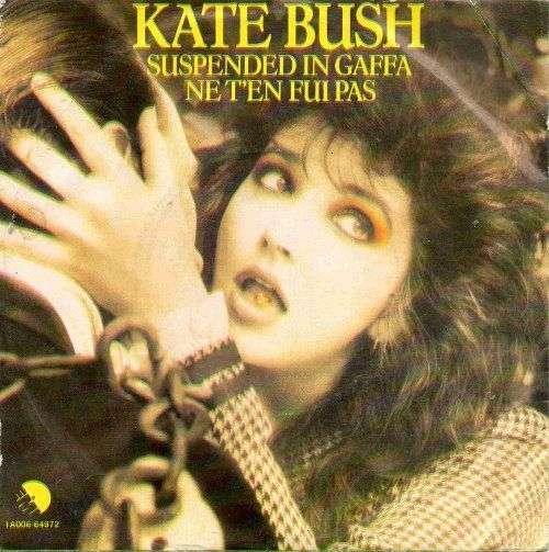 Coverafbeelding Suspended In Gaffa - Kate Bush