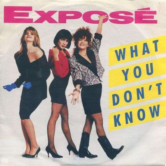 Coverafbeelding What You Don't Know - Expos�