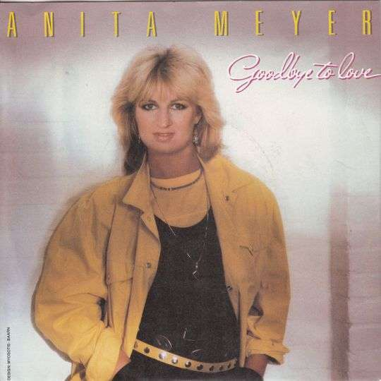 Coverafbeelding Goodbye To Love - Anita Meyer
