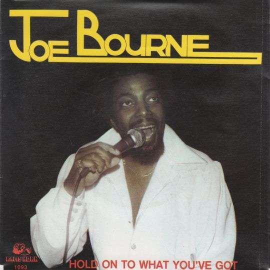 Coverafbeelding Hold On To What You've Got - Joe Bourne