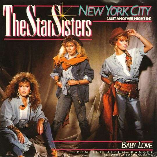 Coverafbeelding New York City (Just Another Night In) - The Star Sisters