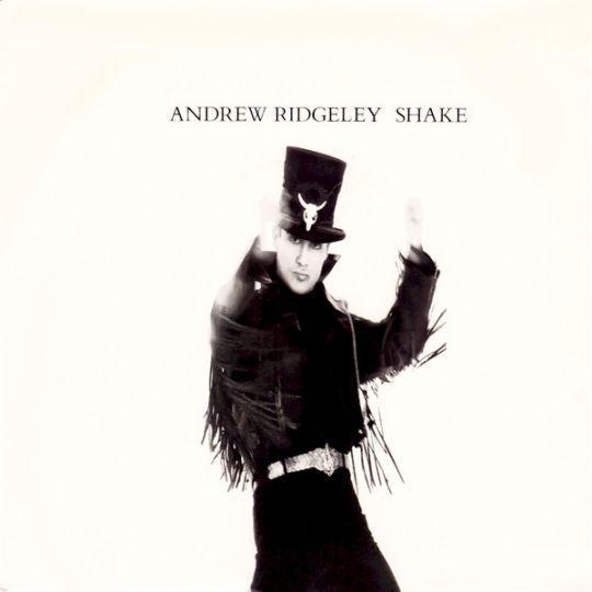 Coverafbeelding Andrew Ridgeley - Shake