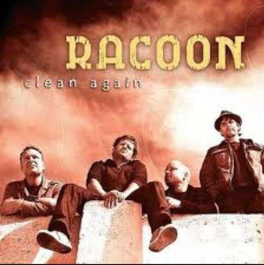 Coverafbeelding Clean Again - Racoon