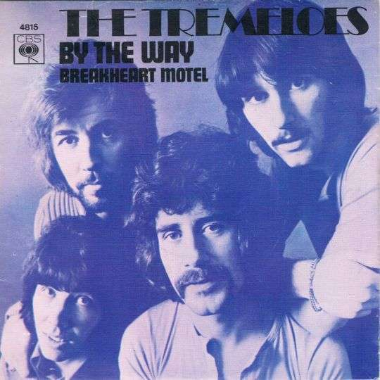 Coverafbeelding By The Way - The Tremeloes