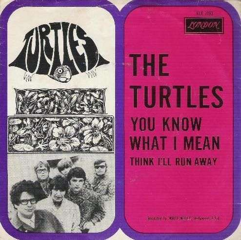 Coverafbeelding You Know What I Mean - The Turtles