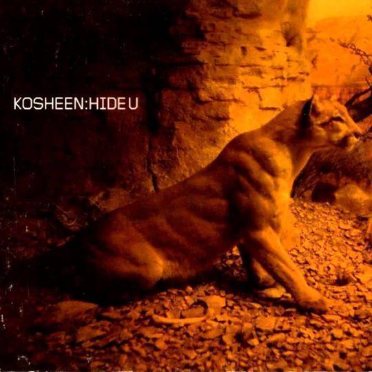 Coverafbeelding Kosheen - Hide U