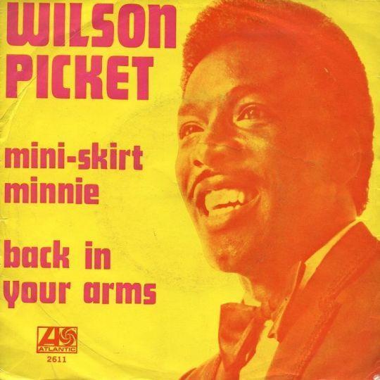 Coverafbeelding Mini-Skirt Minnie - Wilson Picket
