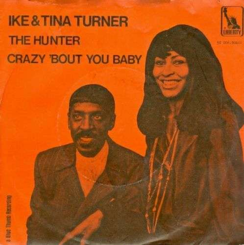 Coverafbeelding Ike & Tina Turner - The Hunter