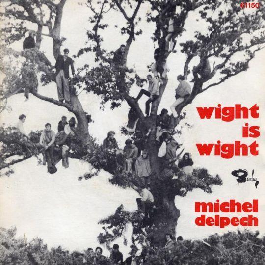 Coverafbeelding Wight Is Wight - Michel Delpech