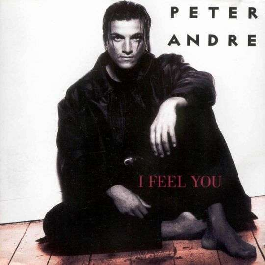 Coverafbeelding I Feel You - Peter Andre