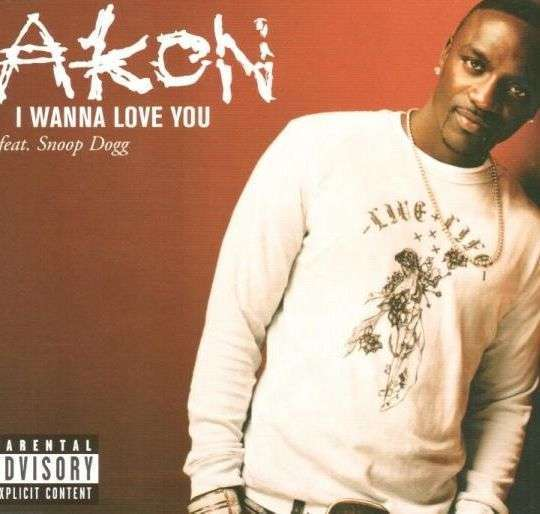 Coverafbeelding Akon feat. Snoop Dogg - I Wanna Love You