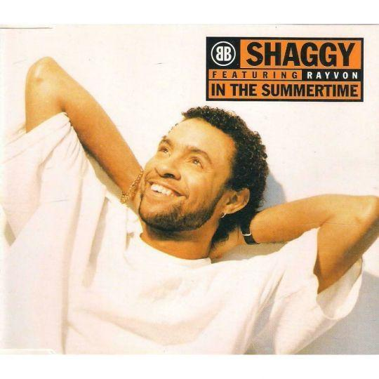 Coverafbeelding In The Summertime - Shaggy Featuring Rayvon