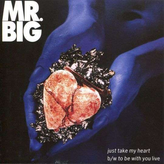 Coverafbeelding Just Take My Heart - Mr. Big ((Usa))