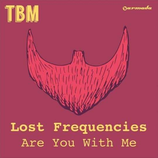 Coverafbeelding Lost Frequencies - Are you with me
