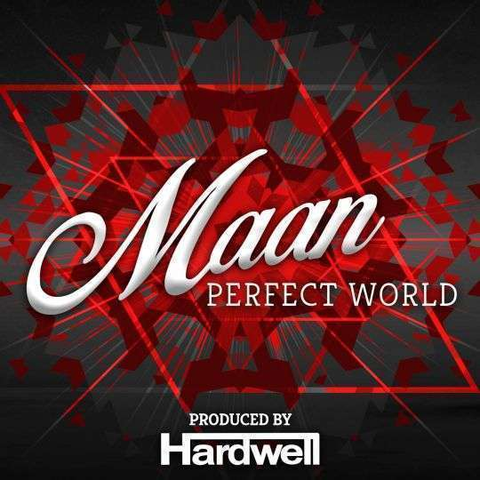 Coverafbeelding Perfect World - Maan