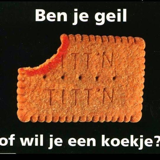 Coverafbeelding Titt'n - Ben Je Geil Of Wil Je Een Koekje?