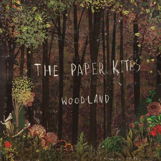 Coverafbeelding The Paper Kites - Bloom