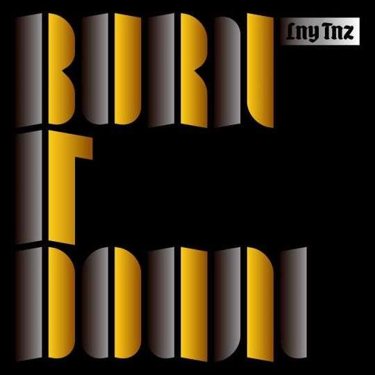Coverafbeelding Lny Tnz - Burn it down